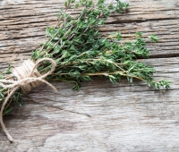 Thyme Herb: History, Nutrition Facts, Health Benefits, Side Effects, and Fun Facts