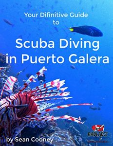 Your Definitive Guide to Scuba Diving in Puerto Galera