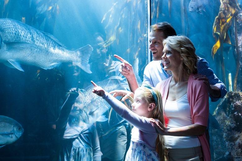 Aquarium of West Australia