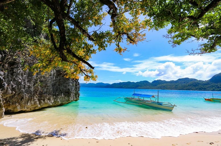Boat and trees in the beautiful Caramoan Islands