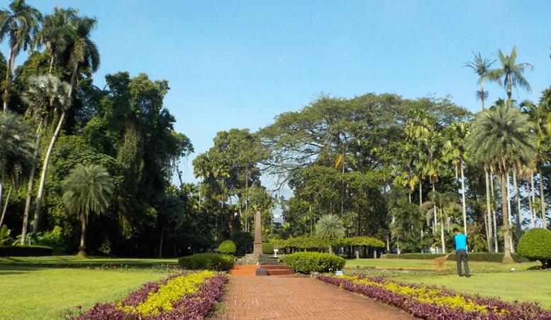 Bogor's Botanical Garden