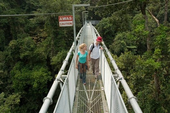 Canopy Walk At Sedim River Recreation Park