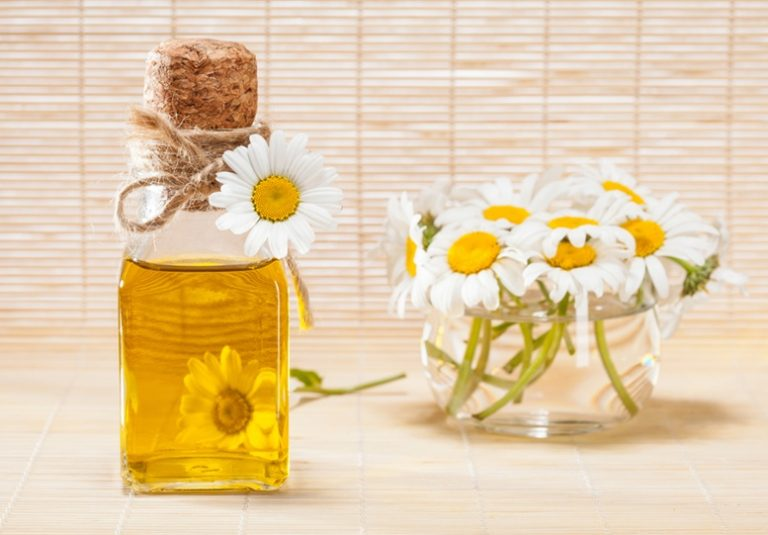 Chamomile Essential Oil Facts And Top Health Benefits - Featured Image