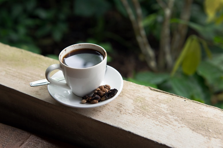 Cup of Kopi Luwak, world's most expensive coffee from Bali