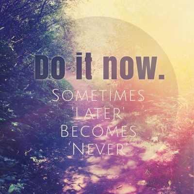 Do it now. Sometimes later becomes never - picture quote