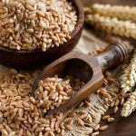 Farro - Health Benefits, Side Effects, Nutrition Facts, Fun Facts & History - Featured Image