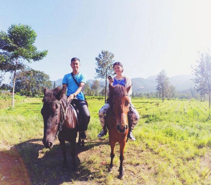 Gunung Mas Tea Plantation