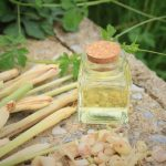 Top 10 Health Benefits of Lemongrass Essential Oil