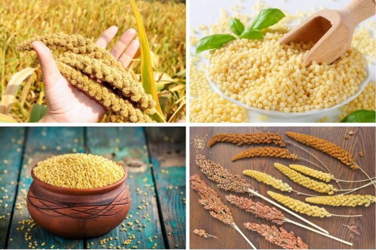 Health Benefits of Millet - Article Featured Image