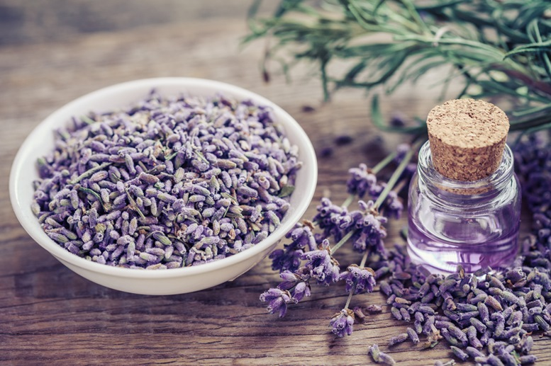 Lavender Essential Oil Article - Featured Image