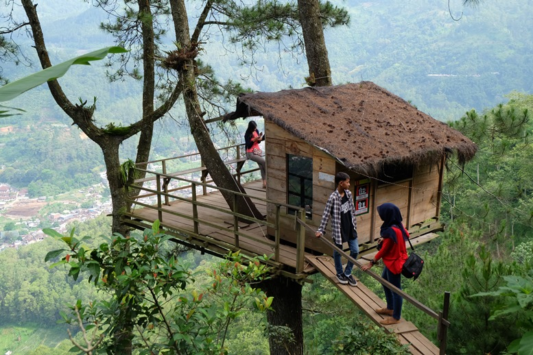 Mount Banyak Tree House
