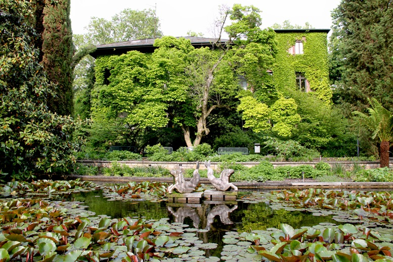 Park Building, house overgrown with ivy - Waterlily pond with gargoyle (water spout) - Palmengarten