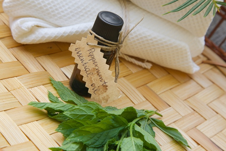 Peppermint Essential Oil 3