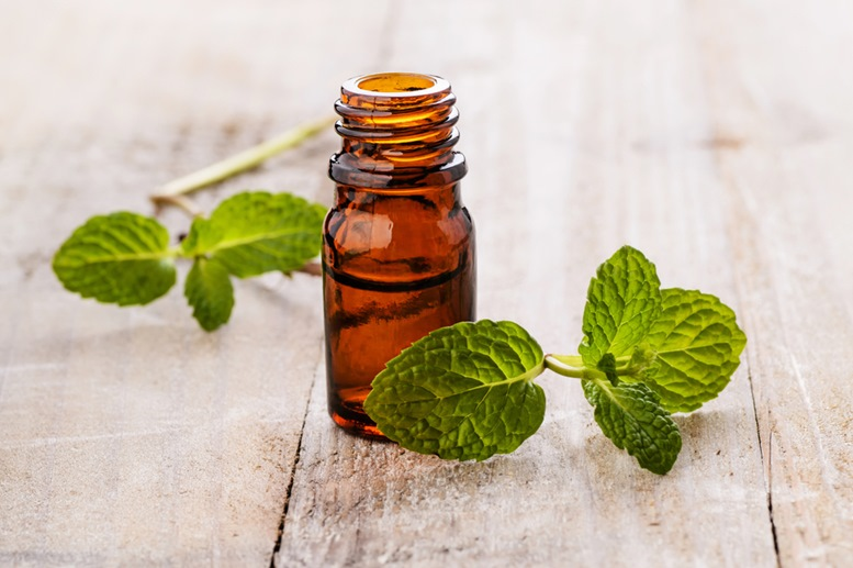 Peppermint Essential Oil Article - Featured Image