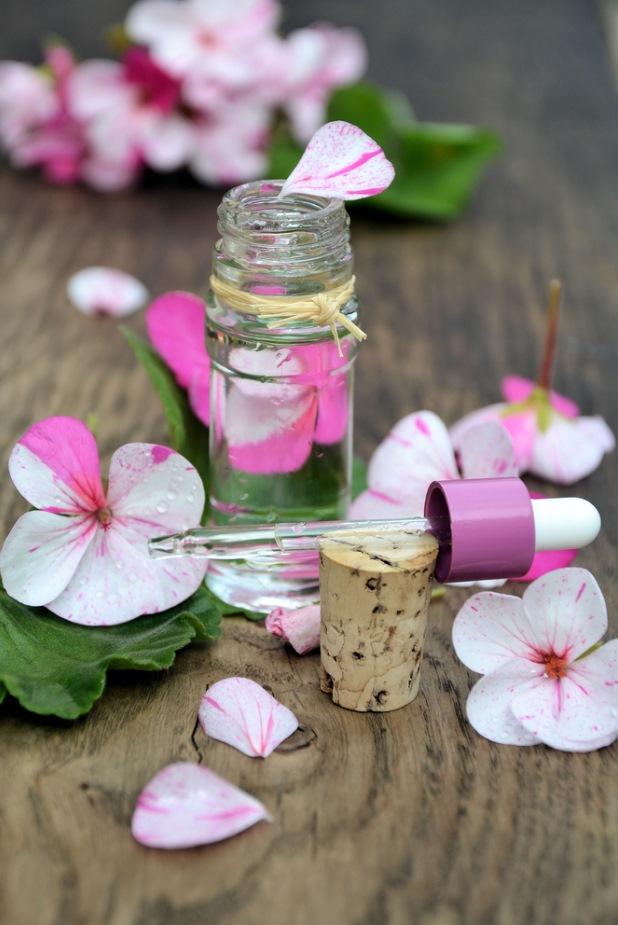 Pink Rose Geranium Essential Oil