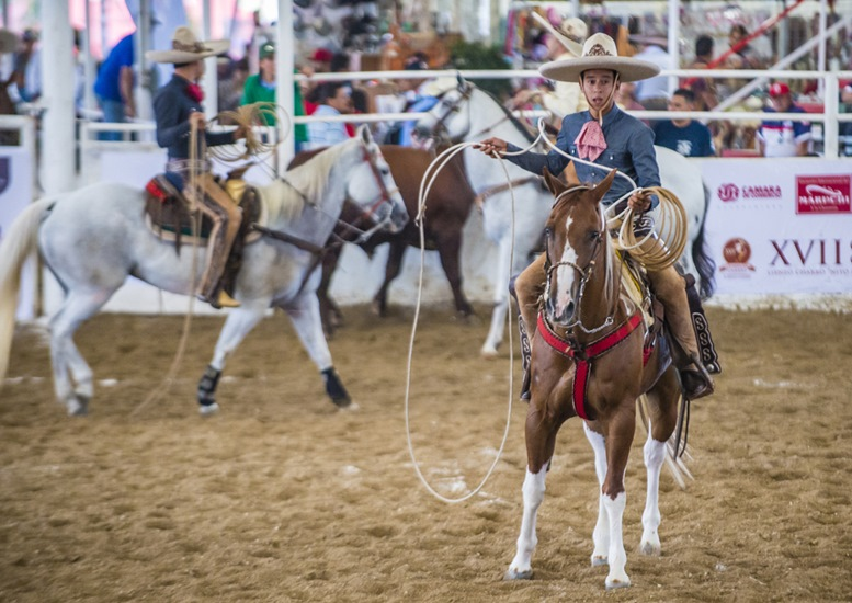 Rodeo festival