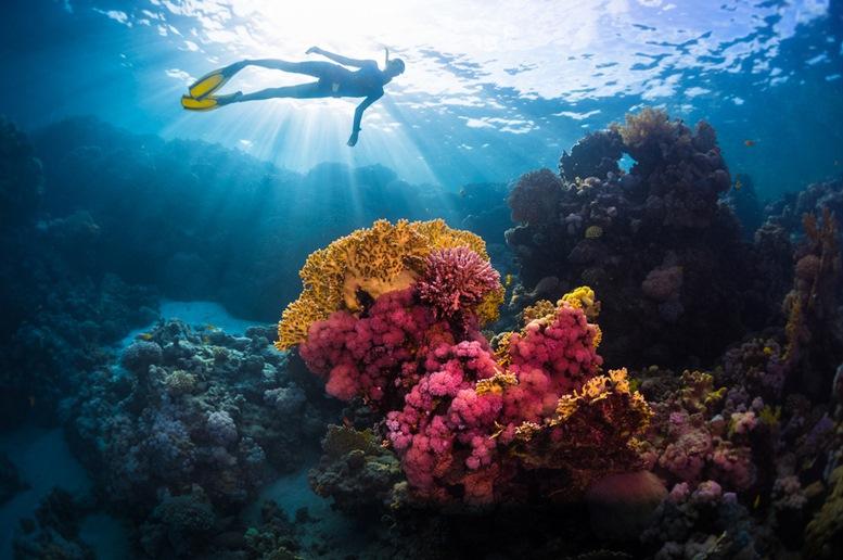 Scuba Diver at Miri, Malaysia