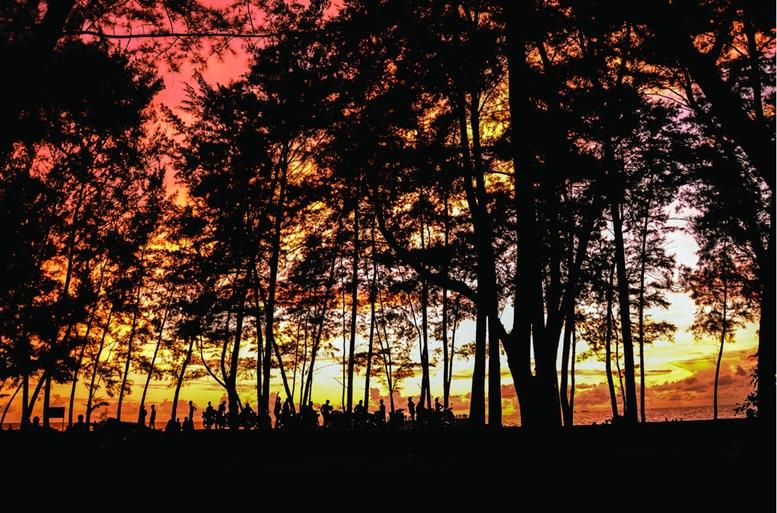 Silhouette and sunset view at Tanjong Lobang Beach, Miri, Sarawak, East Malaysia. Borneo.