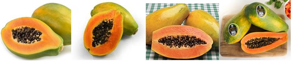 Solo, Sunrise solo, Golden, and Formosa papaya.