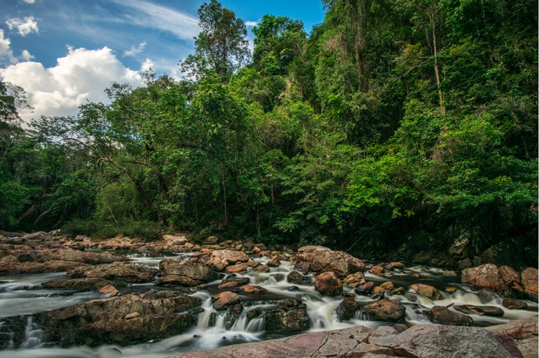 Taman Negara (Kuala Koh) Unreflective River