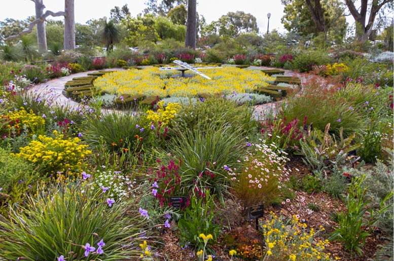 The floral clock in full bloom - Kings Park