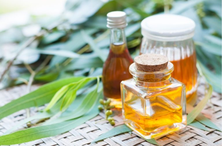 Top 10 Health Benefits & Uses of Eucalyptus Essential Oil - Featured Image