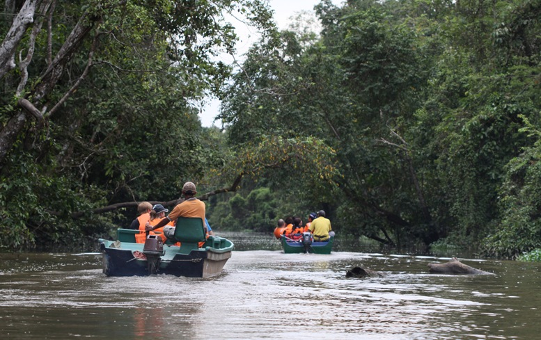 Tourists on boats cruising along Kinabatangan River