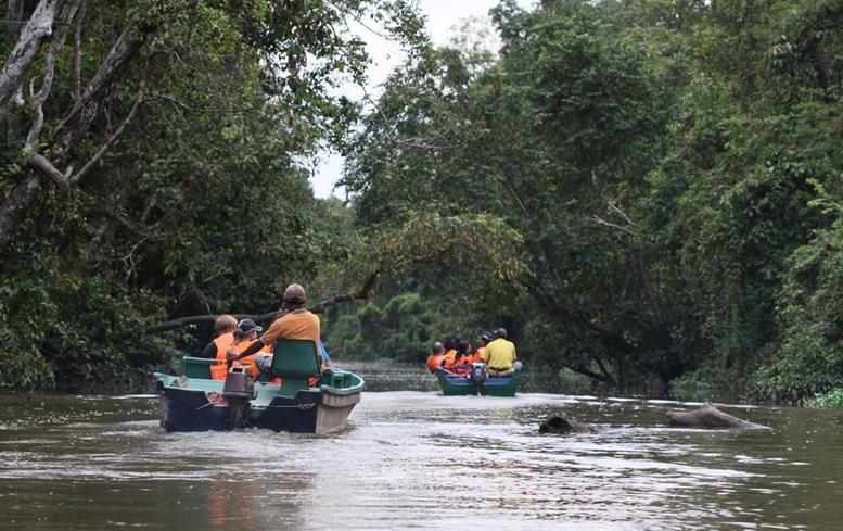 Tourists on boats cruising along Kinabatangan River