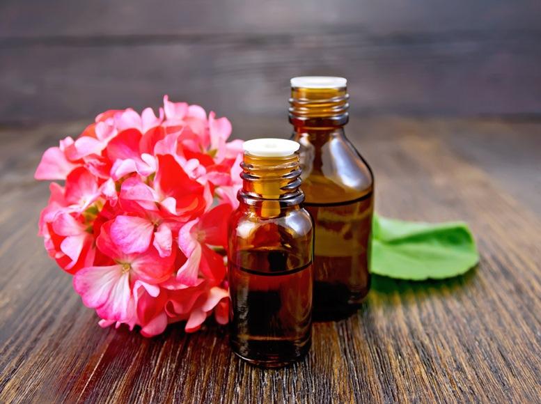 pink geranium oil